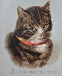 Early Helena Maguire cat, circa 1890