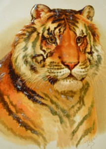 Helena Maguire's Tiger Cat
