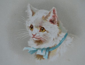 Helena Maguire's Mother Cat - Circa 1900